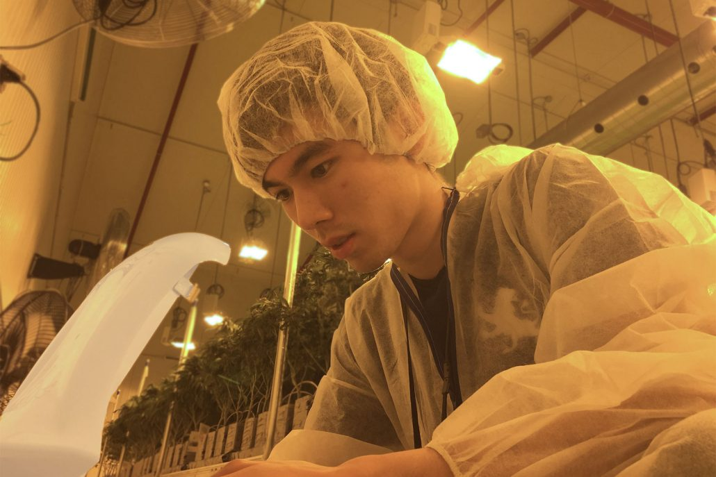 First Successful Deployment to a Medical Cannabis Grower WeedMD