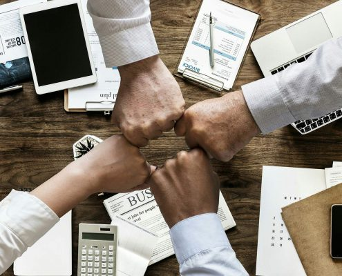 Ample organics enter into Strategic Partnership