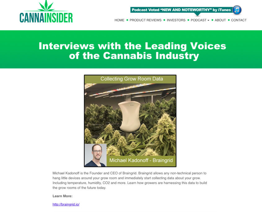 Interview with the Leading Voices of the Cannabis Industry
