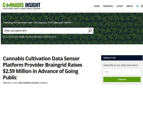 braingrid media screenshot cannabis insight