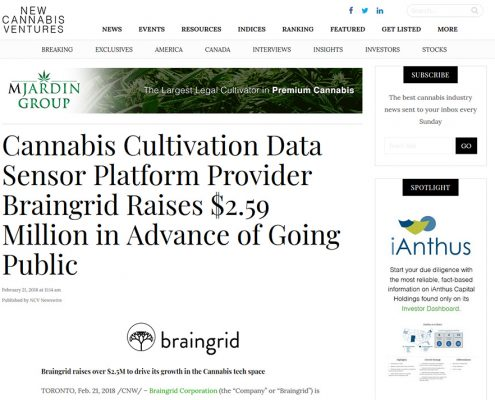 braingrid media screenshot new cannabis ventures