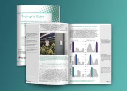 braingrid-guide-anomalies